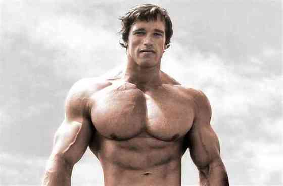 Arnold Schwarzenegger Net Worth, Height, Age, Affair, Career, and More