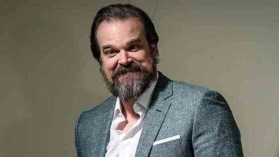 David Harbour Net Worth, Height, Age, Affair, Career, and More