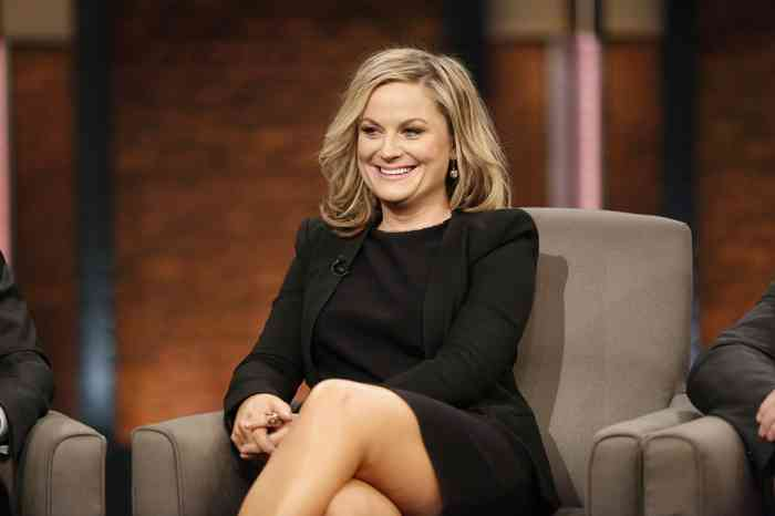 Amy Poehler Height, Age, Net Worth, Affair, Career, and More