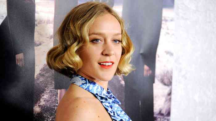 Chloë Sevigny Net Worth, Age, Height, Career, and More