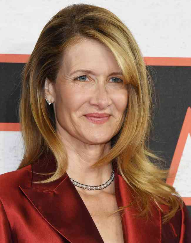 Laura Dern Age, Net Worth, Height, Affair, Career, and More