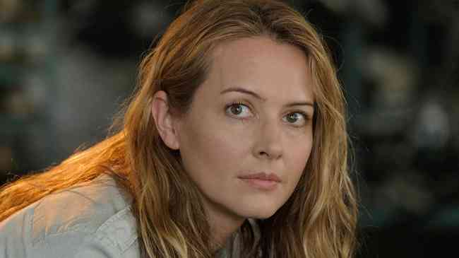 Amy Acker Age, Net Worth, Height, Affair, Career, and More