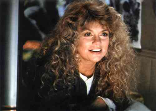 Dyan Cannon Net Worth, Height, Age, Affair, Career, and More