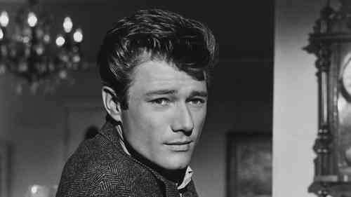 Michael Parks Net Worth, Height, Age, Affair, Career, and More