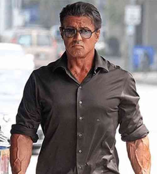 Sylvester Stallone Net Worth, Age, Height, Career, and More